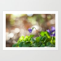 Wild Violet Art Print