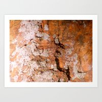 Petrified Wood 1 Art Print
