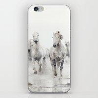 Ghost Riders - Horse Art iPhone & iPod Skin