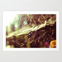 Cobweb Art Print