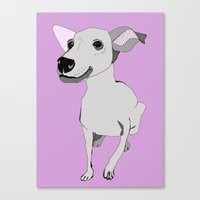 Whippet smile Canvas Print
