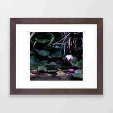apple in the pond Framed Art Print