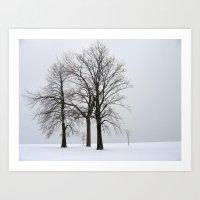 Three Trees In Winter Art Print
