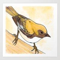 Yellow Blue Warbler Art Print