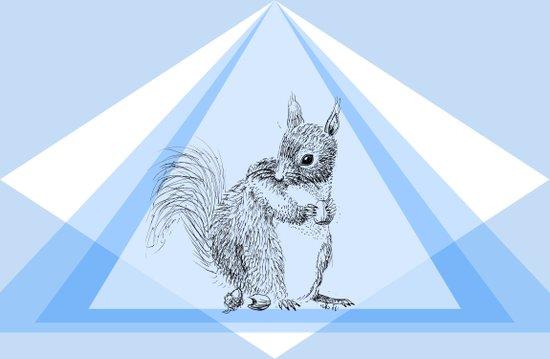Squirrel stealing nuts Art Print