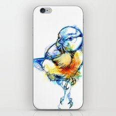 Little Claws iPhone & iPod Skin