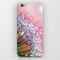 Rainbow Dandelion iPhone & iPod Skin