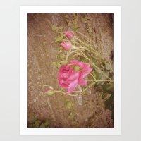 rose vintage Art Print