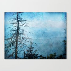 Clingman's Dome, Smoky Mountains Tennessee Canvas Print