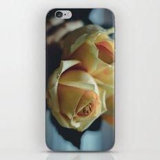 Deep dark iPhone & iPod Skin