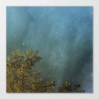 First Flurries Canvas Print
