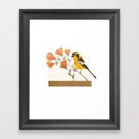 Blackburnian Warbler Framed Art Print
