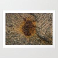 Rusted Water Art Print