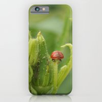 iPhone & iPod Case featuring Fly Away Home by PhotographyByJoylene