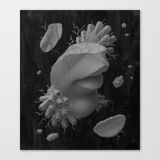 Fragments I Canvas Print