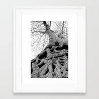 Taking Root Framed Art Print