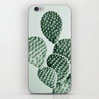 Green Bunny Ears Cactus  iPhone & iPod Skin