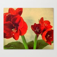 My Christmas Flower Canvas Print