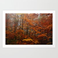 Orange Leaves Trees Forest Color Photo Art Print