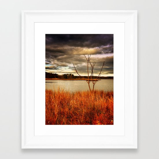 Fall Stalk Framed Art Print