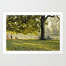 afternoon sun Art Print