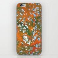 Tangled Fall iPhone & iPod Skin