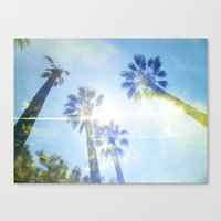 Faded Palms Canvas Print