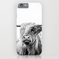 portrait iPhone & iPod Cases featuring portrait of a highland cow by Dorit Fuhg