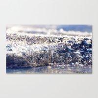 Land of Ice Canvas Print