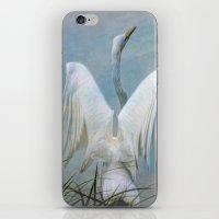 Egret Preparing to Launch iPhone & iPod Skin