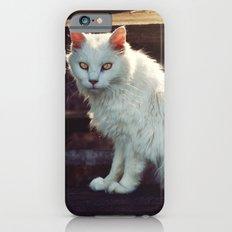 Ghost Cat iPhone 6 Slim Case
