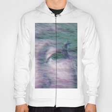 Kingdom of the little seagull Hoody