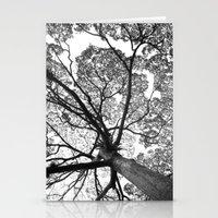 Jungletree Stationery Cards