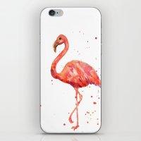 Flamingo, Pink Flamingo, Tropical, bird art, Florida iPhone & iPod Skin