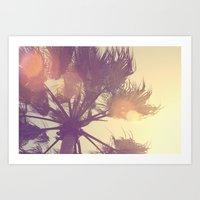 Sunset Palm Art Print