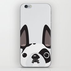This is Rocky iPhone & iPod Skin