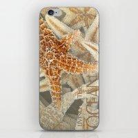 Living In The Ocean iPhone & iPod Skin