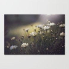 so what if I like pretty things? Canvas Print