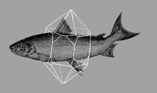 Fish In Geometrics Art Print