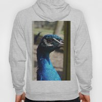 Mr Peacock Hoody