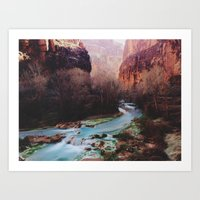 Havasu Canyon Creek Art Print