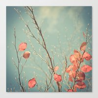 The Winter Days of Autumn Canvas Print