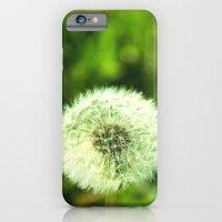 Blow me iPhone 6 Slim Case
