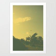 Hawaii Plane - Maui Art Print