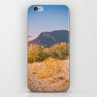 Autumn Sand Dune iPhone & iPod Skin