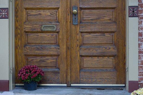 Doors 1 Art Print
