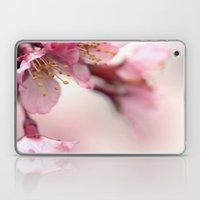 Gentle Laptop & iPad Skin