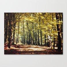colorful way Canvas Print