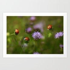 Ladybirds.... Art Print