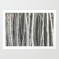 Birch Trees Art Print
